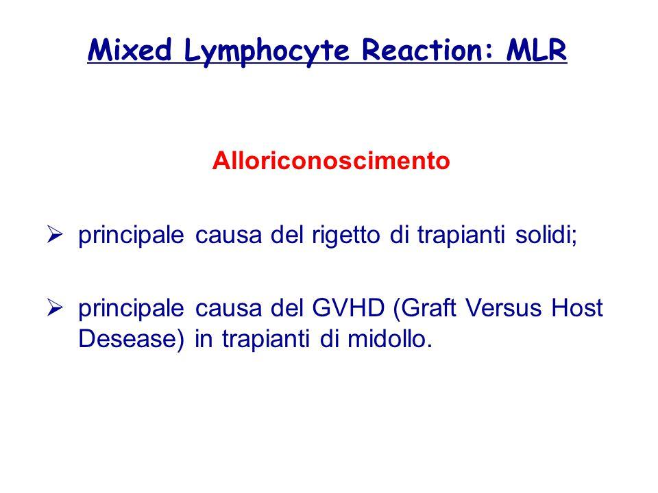 Alloriconoscimento  principale causa del rigetto di trapianti solidi;  principale causa del GVHD (Graft Versus Host Desease) in trapianti di midollo