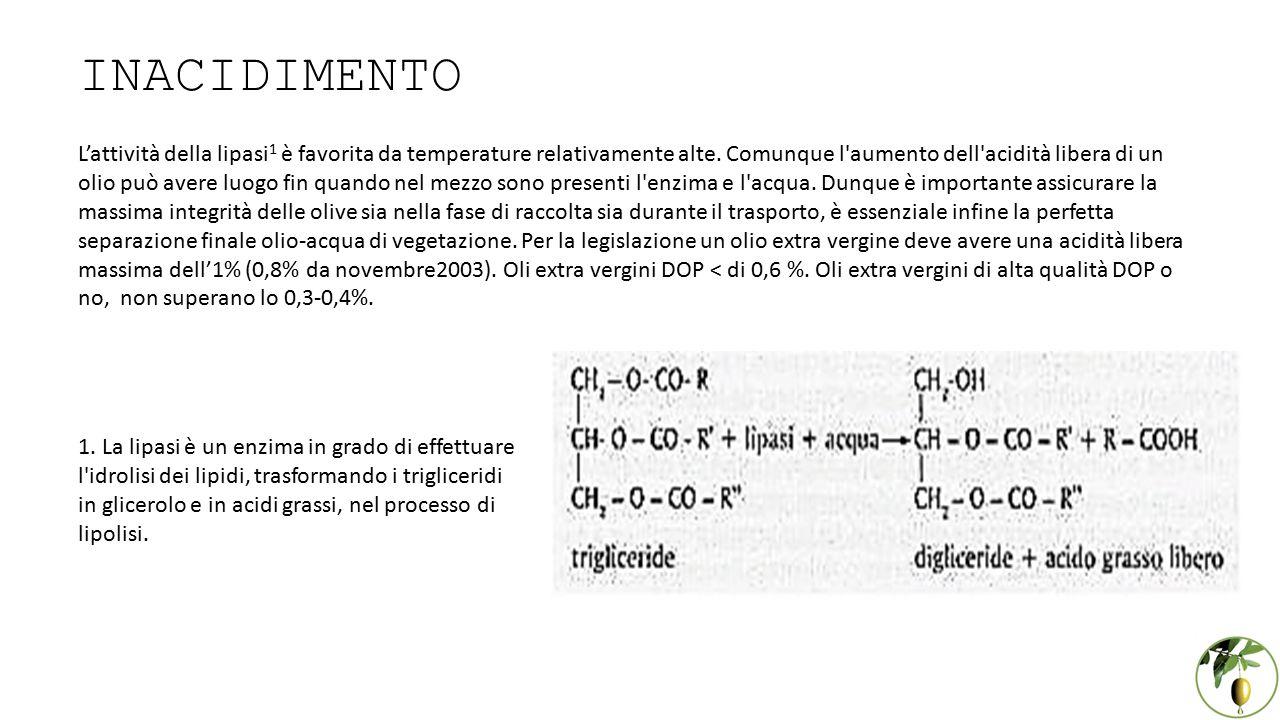 INACIDIMENTO L'attività della lipasi 1 è favorita da temperature relativamente alte. Comunque l'aumento dell'acidità libera di un olio può avere luogo