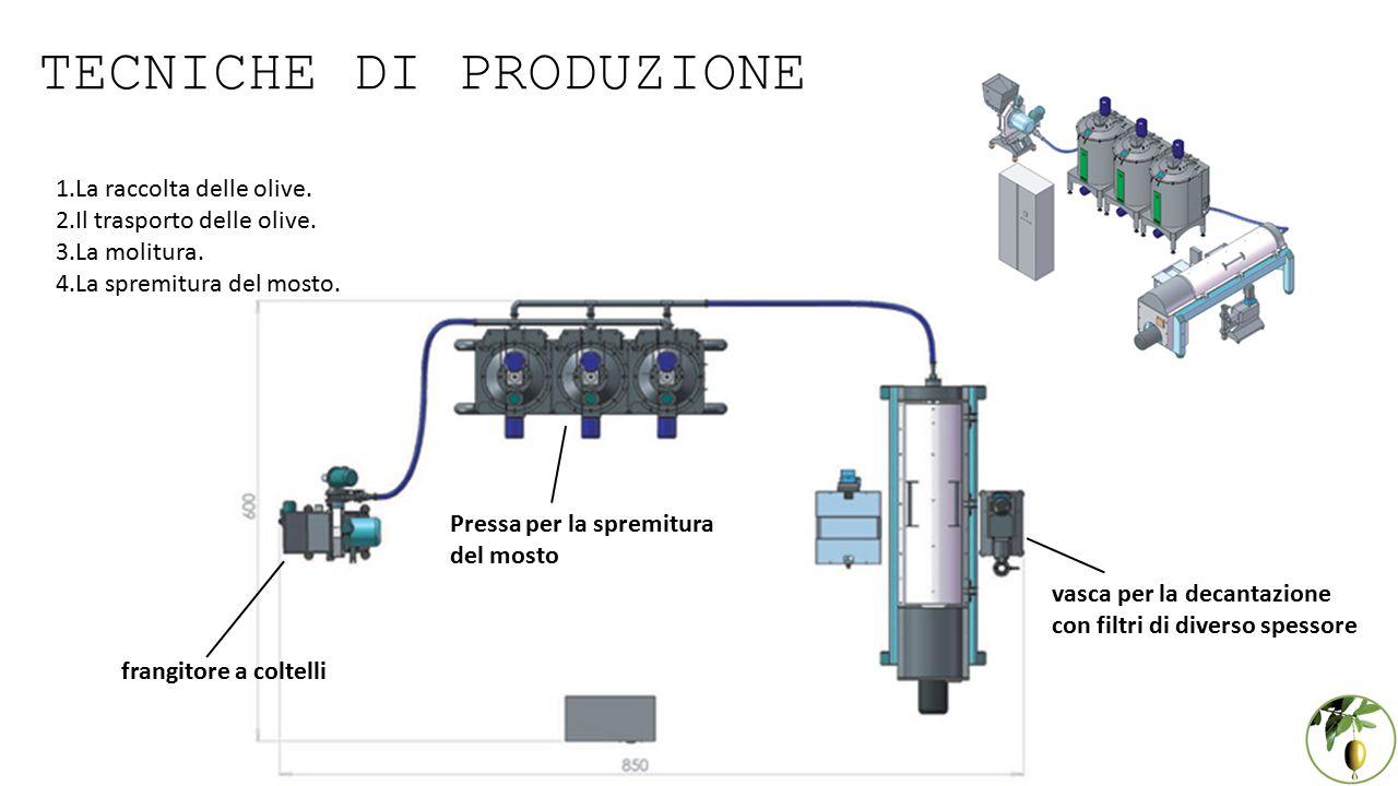 TECNICHE DI PRODUZIONE 1.La raccolta delle olive.2.Il trasporto delle olive.