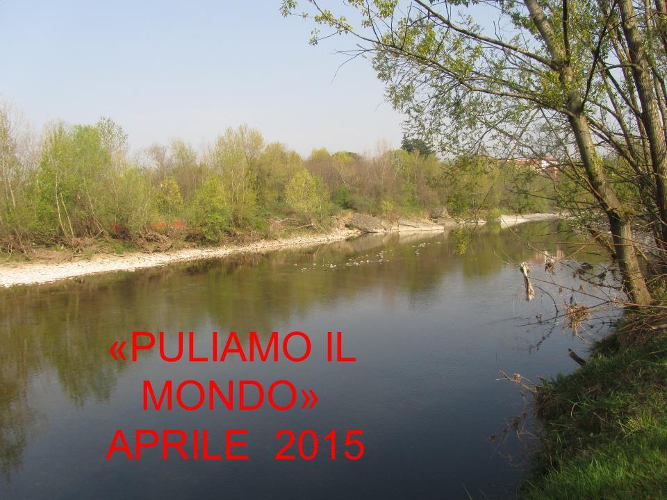 Sabato 11 aprile 2015 gli alunni delle quattro classi prime della scuola secondaria di Ponte San Pietro, accompagnati dagli insegnanti, hanno eseguito la pulizia dell'area demaniale dell'Isolotto, lungo il fiume Brembo.