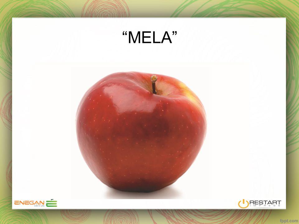 """MELA"""