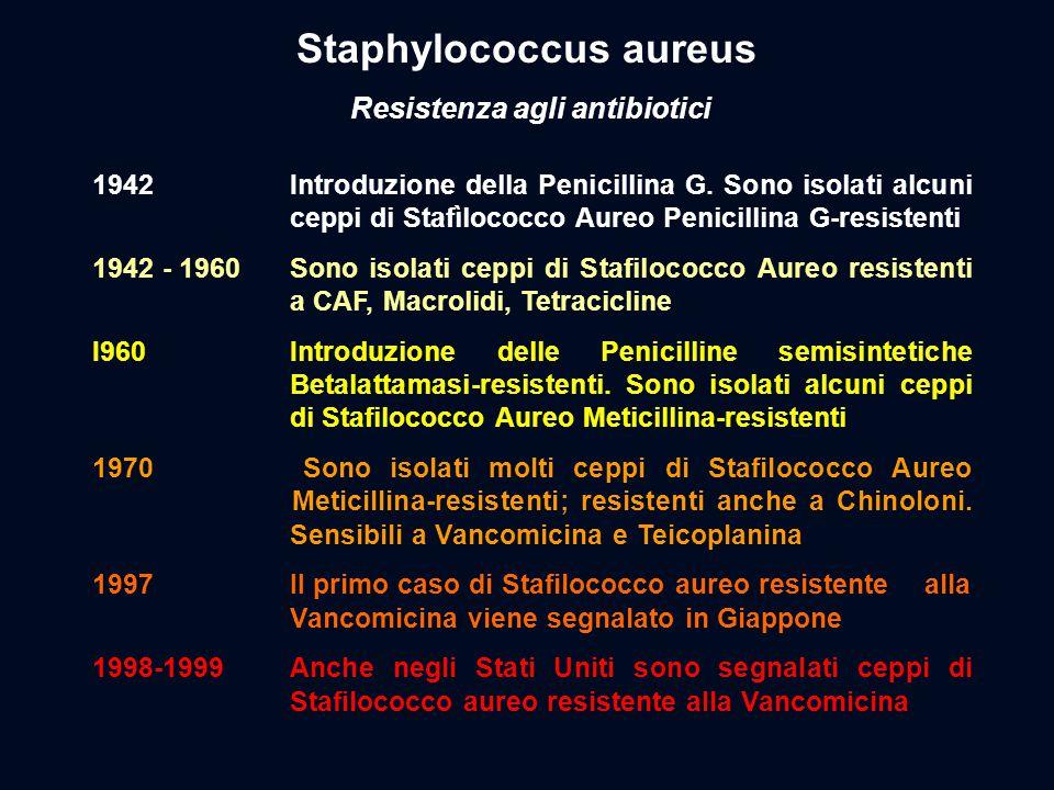 1942 Introduzione della Penicillina G. Sono isolati alcuni ceppi di Stafìlococco Aureo Penicillina G-resistenti 1942 - 1960Sono isolati ceppi di Stafi