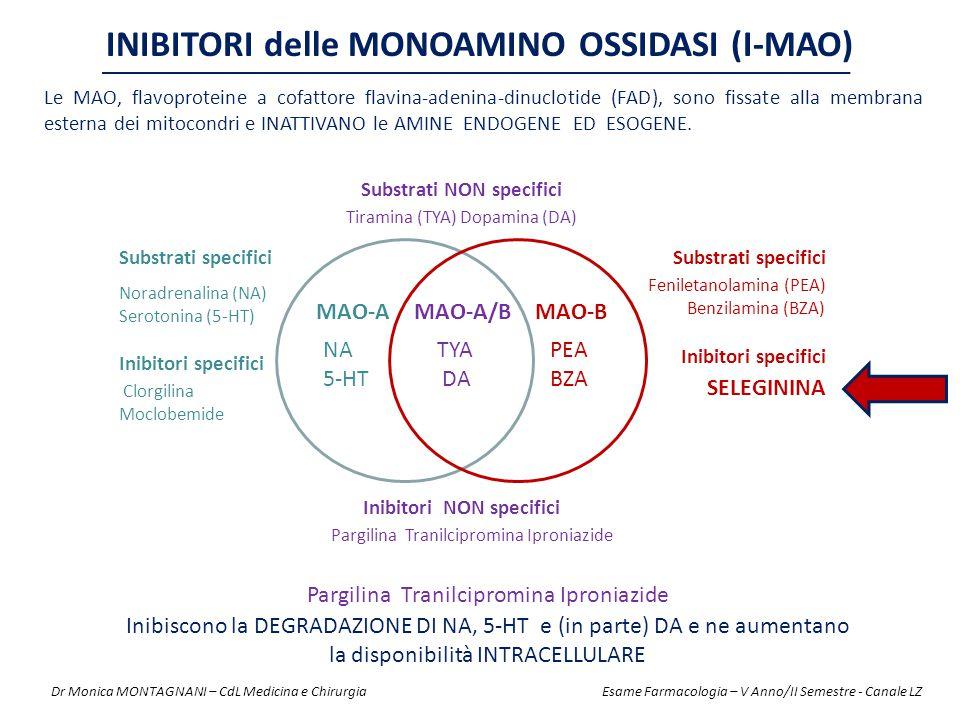 INIBITORI delle MONOAMINO OSSIDASI (I-MAO) Pargilina Tranilcipromina Iproniazide Inibiscono la DEGRADAZIONE DI NA, 5-HT e (in parte) DA e ne aumentano