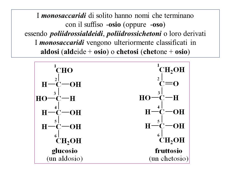 I monosaccaridi di solito hanno nomi che terminano con il suffiso -osio (oppure -oso) essendo poliidrossialdeidi, poliidrossichetoni o loro derivati I