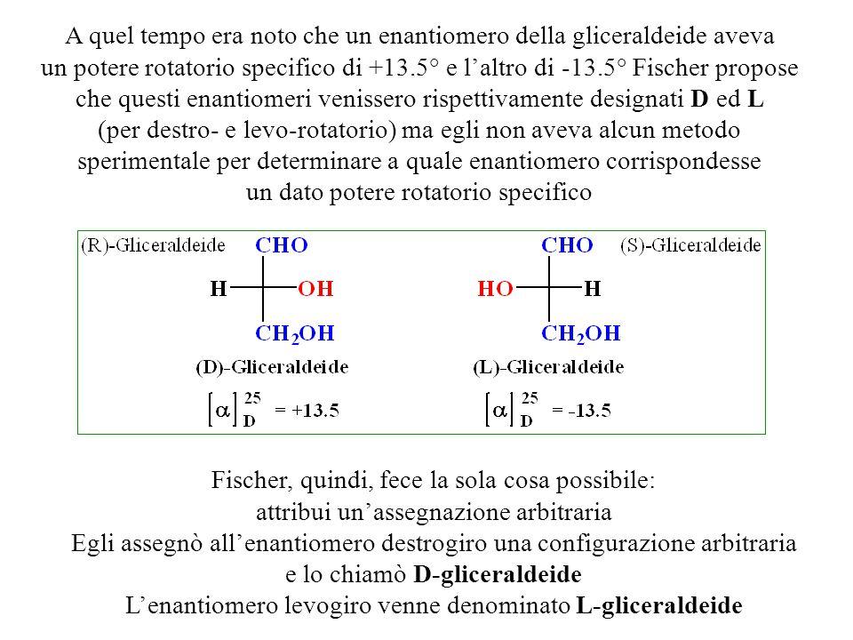 A quel tempo era noto che un enantiomero della gliceraldeide aveva un potere rotatorio specifico di +13.5° e l'altro di -13.5° Fischer propose che que