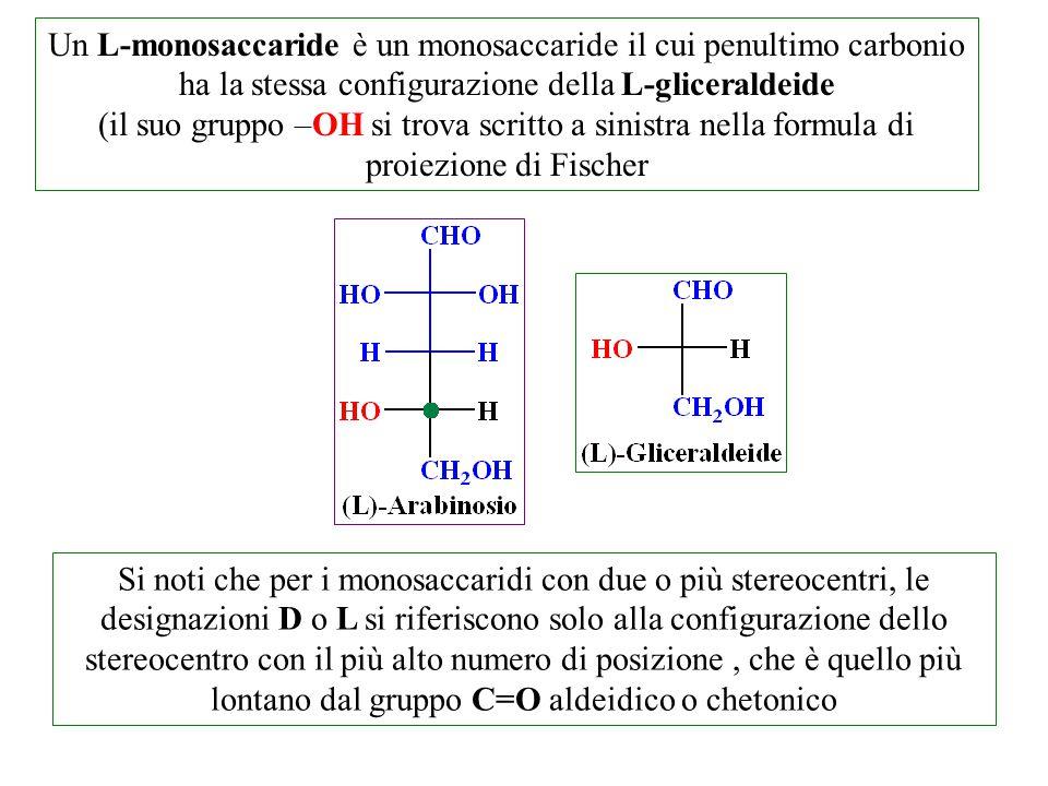 Un L-monosaccaride è un monosaccaride il cui penultimo carbonio ha la stessa configurazione della L-gliceraldeide (il suo gruppo –OH si trova scritto