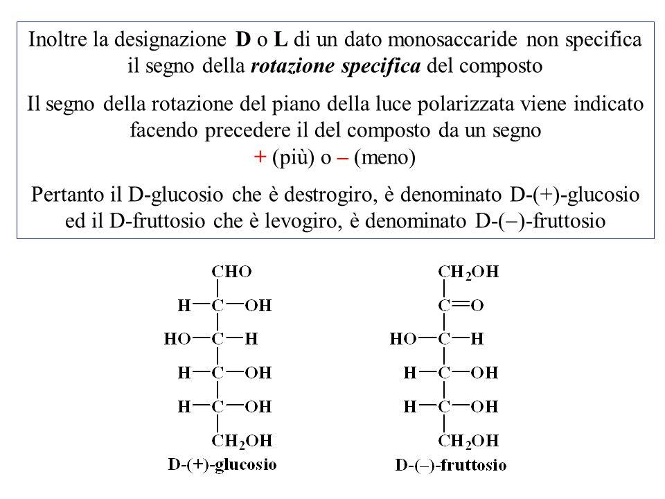 Inoltre la designazione D o L di un dato monosaccaride non specifica il segno della rotazione specifica del composto Il segno della rotazione del pian