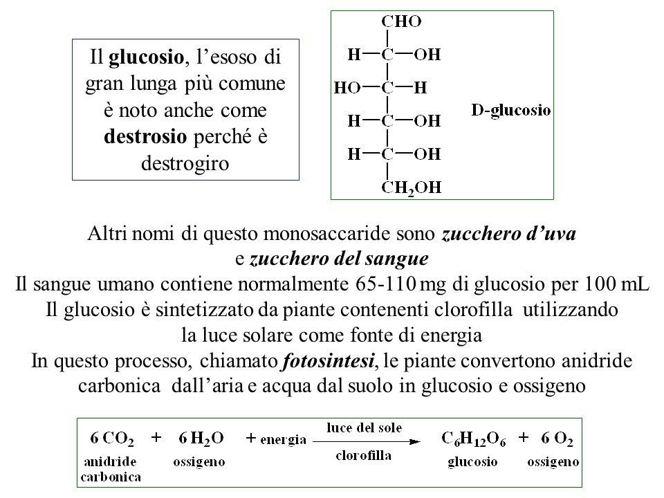 Il glucosio, l'esoso di gran lunga più comune è noto anche come destrosio perché è destrogiro Altri nomi di questo monosaccaride sono zucchero d'uva e