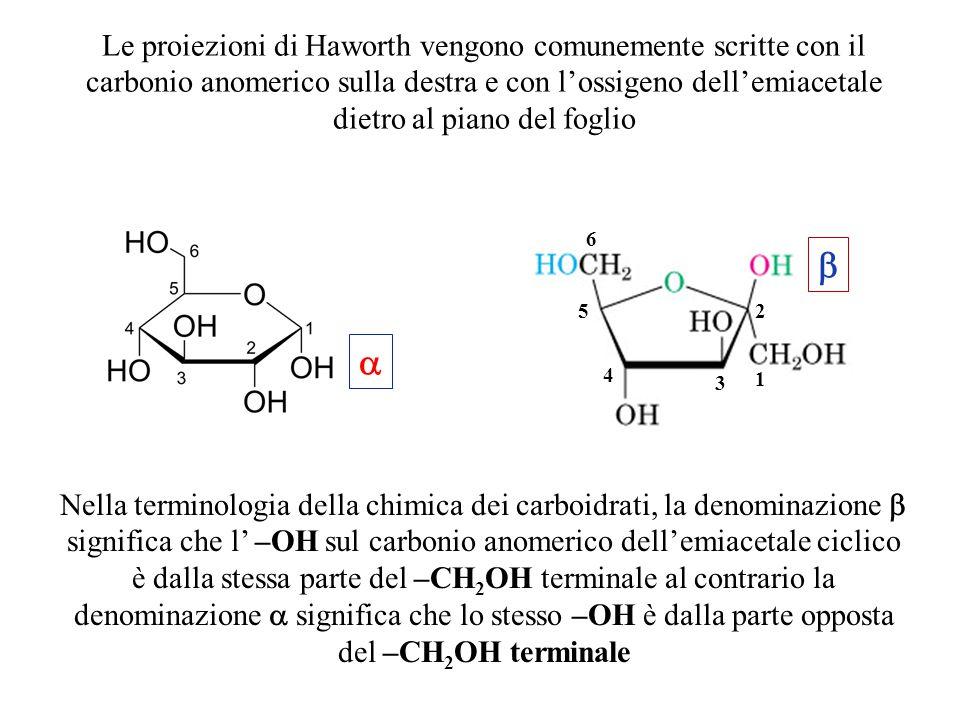Le proiezioni di Haworth vengono comunemente scritte con il carbonio anomerico sulla destra e con l'ossigeno dell'emiacetale dietro al piano del fogli