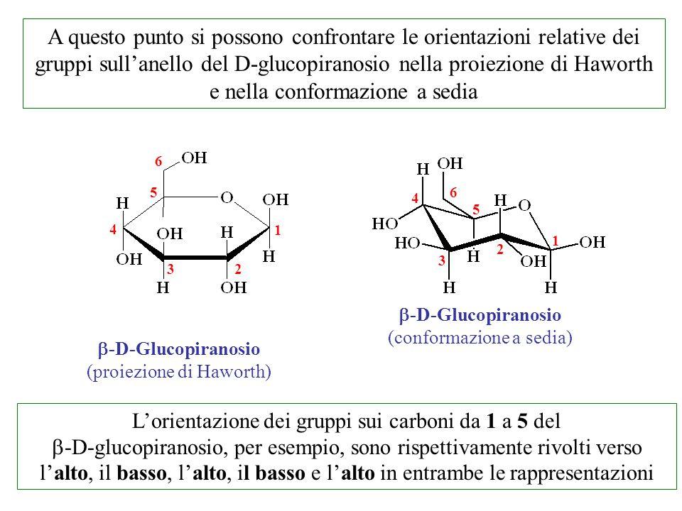 A questo punto si possono confrontare le orientazioni relative dei gruppi sull'anello del D-glucopiranosio nella proiezione di Haworth e nella conform