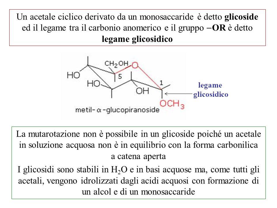 Un acetale ciclico derivato da un monosaccaride è detto glicoside ed il legame tra il carbonio anomerico e il gruppo  OR è detto legame glicosidico l