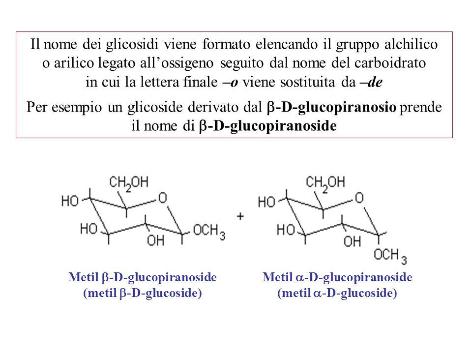 Metil  -D-glucopiranoside (metil  -D-glucoside) Metil  -D-glucopiranoside (metil  -D-glucoside) Il nome dei glicosidi viene formato elencando il g