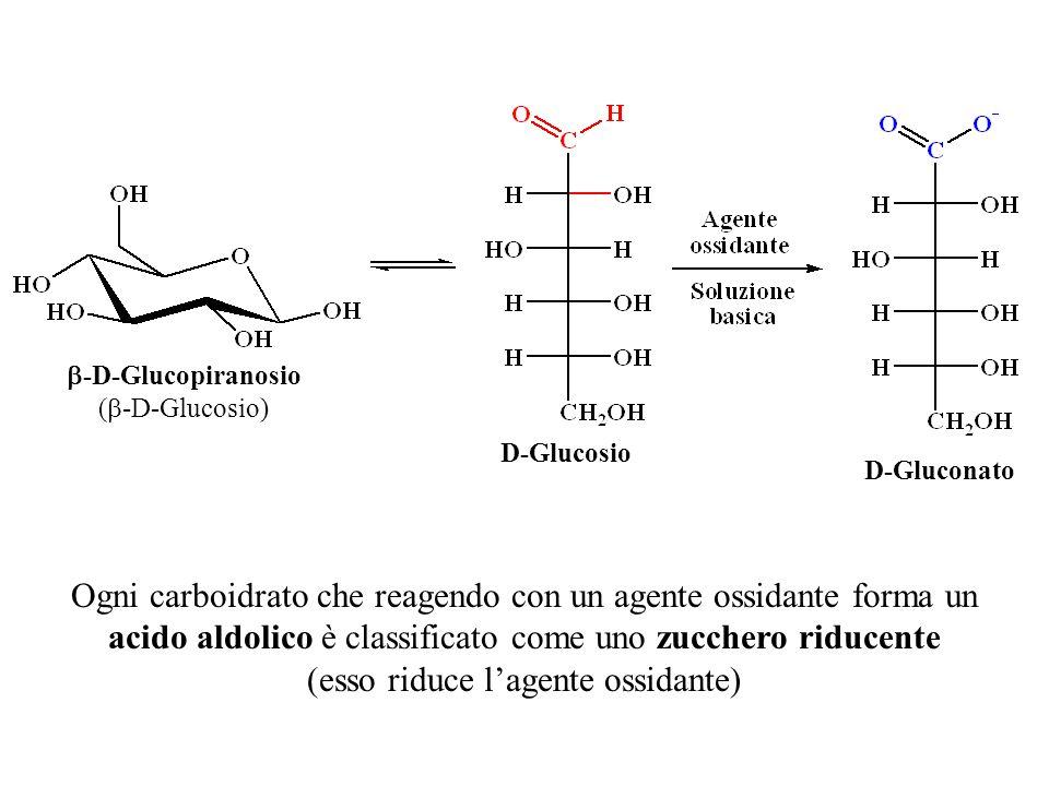  -D-Glucopiranosio (  -D-Glucosio) D-Glucosio D-Gluconato Ogni carboidrato che reagendo con un agente ossidante forma un acido aldolico è classifica
