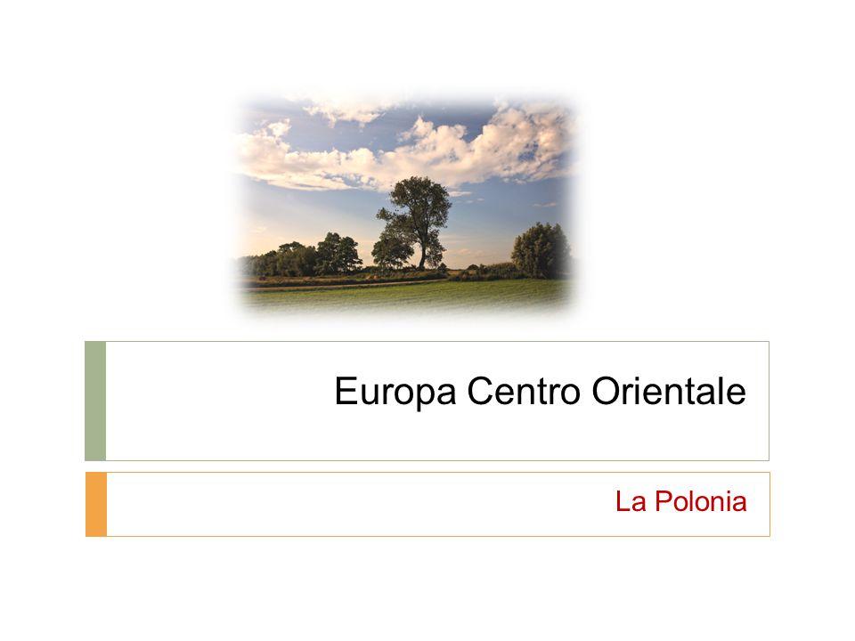 La zona centro orientale: posizione e morfologia Fascia di territorio dal Mar Baltico ( nord) fino al Mar Nero ( sud).