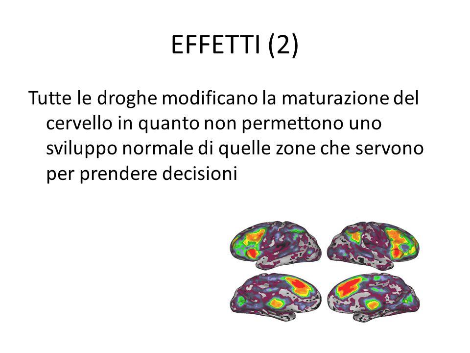EFFETTI (2) Tutte le droghe modificano la maturazione del cervello in quanto non permettono uno sviluppo normale di quelle zone che servono per prende
