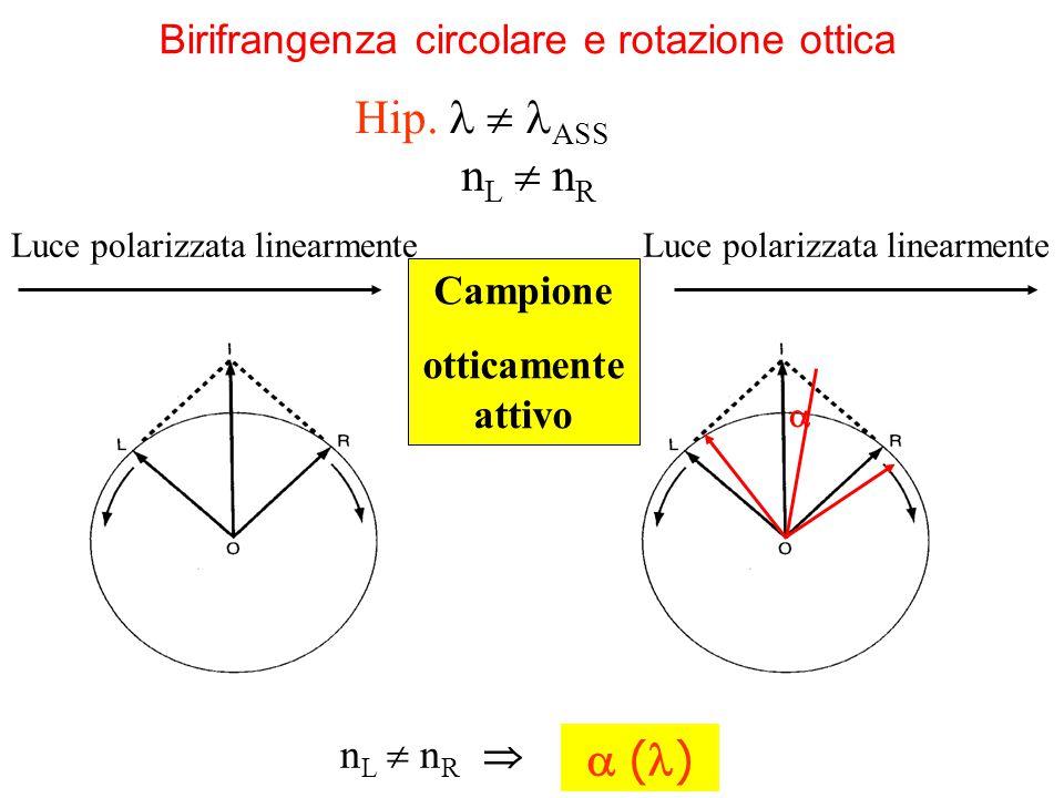 Birifrangenza circolare e rotazione ottica Campione otticamente attivo n L  n R   ( ) Luce polarizzata linearmente Hip.  ASS n L  n R