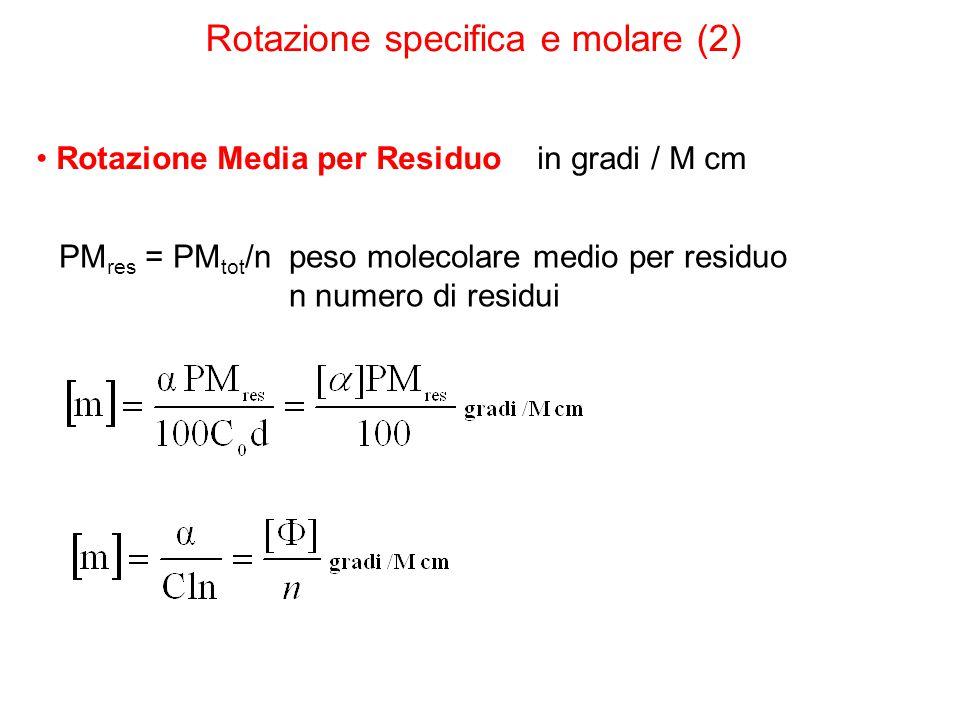 Rotazione Media per Residuo in gradi / M cm PM res = PM tot /n peso molecolare medio per residuo n numero di residui Rotazione specifica e molare (2)