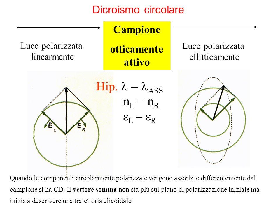 Campione otticamente attivo Dicroismo circolare Quando le componenti circolarmente polarizzate vengono assorbite differentemente dal campione si ha CD