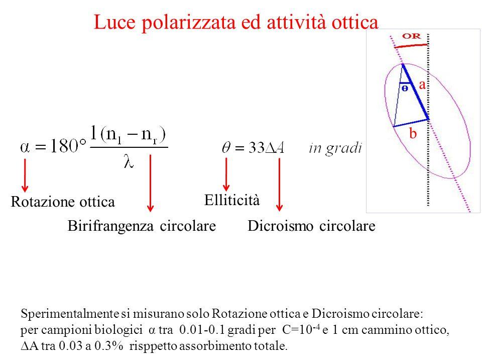 Luce polarizzata ed attività ottica Rotazione ottica Birifrangenza circolareDicroismo circolare Elliticità Sperimentalmente si misurano solo Rotazione