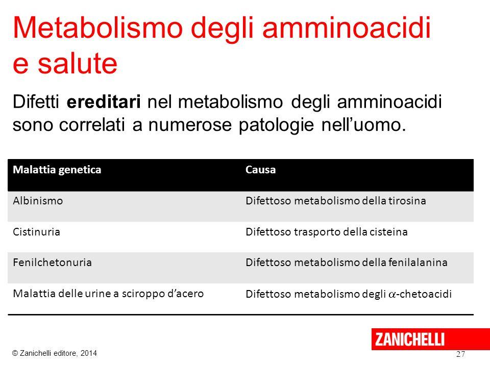 Metabolismo degli amminoacidi e salute Difetti ereditari nel metabolismo degli amminoacidi sono correlati a numerose patologie nell'uomo. 27 Malattia