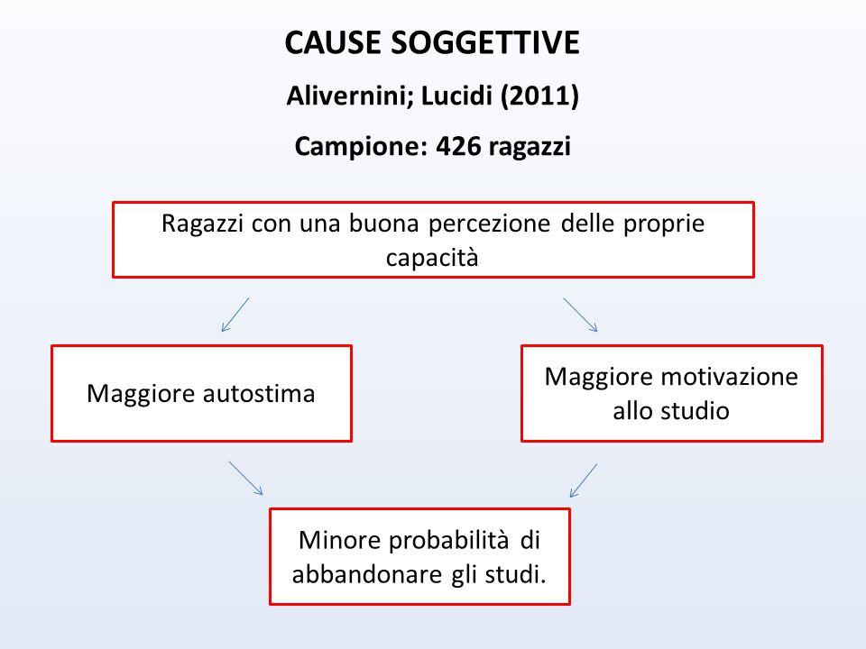 CAUSE SOGGETTIVE Alivernini; Lucidi (2011) Campione: 426 ragazzi Ragazzi con una buona percezione delle proprie capacità Maggiore autostima Maggiore motivazione allo studio Minore probabilità di abbandonare gli studi.