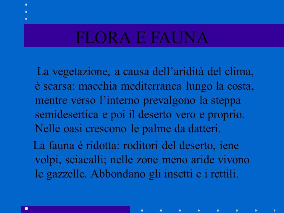 FLORA E FAUNA La vegetazione, a causa dell'aridità del clima, è scarsa: macchia mediterranea lungo la costa, mentre verso l'interno prevalgono la step