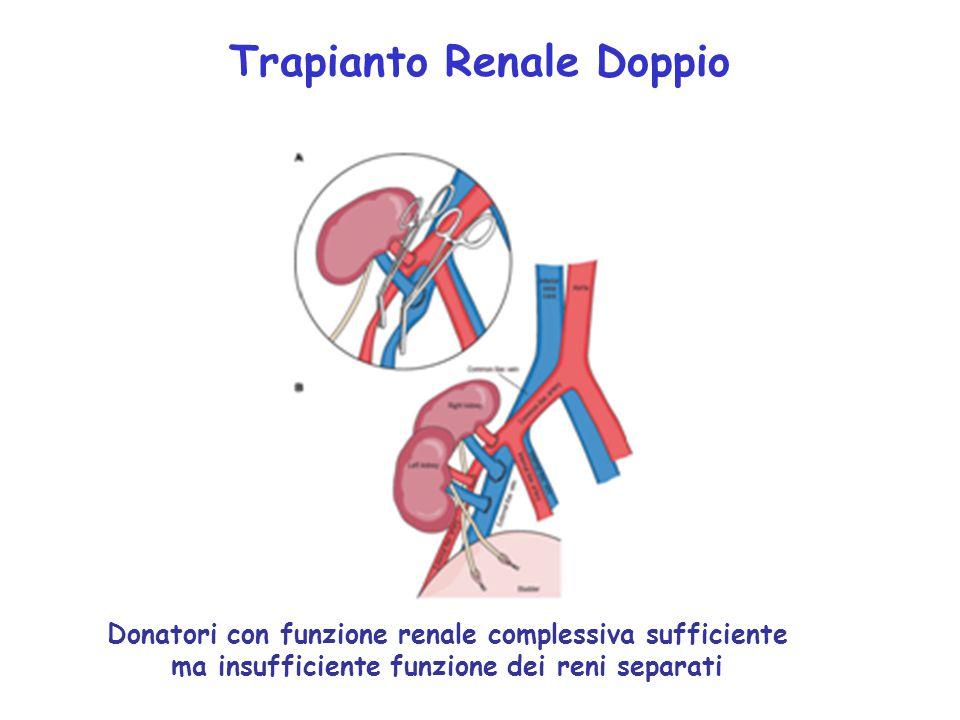 Trapianto Renale Doppio Donatori con funzione renale complessiva sufficiente ma insufficiente funzione dei reni separati