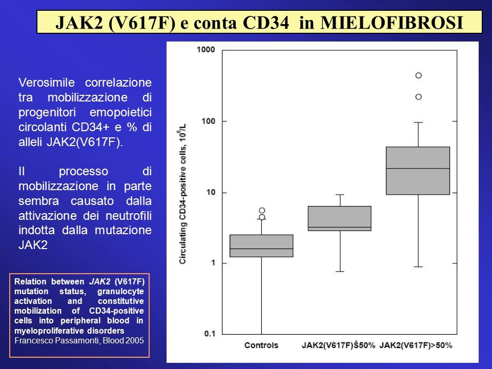 Verosimile correlazione tra mobilizzazione di progenitori emopoietici circolanti CD34+ e % di alleli JAK2(V617F). Il processo di mobilizzazione in par