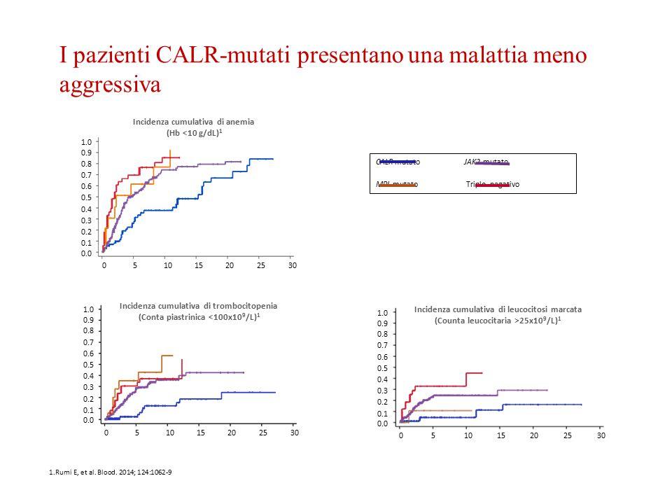 I pazienti CALR-mutati presentano una malattia meno aggressiva 1.0 0.9 0.8 0.7 0.6 0.5 0.4 0.3 0.2 0.1 0.0 051015202530 Tempo, anni Incidenza cumulati