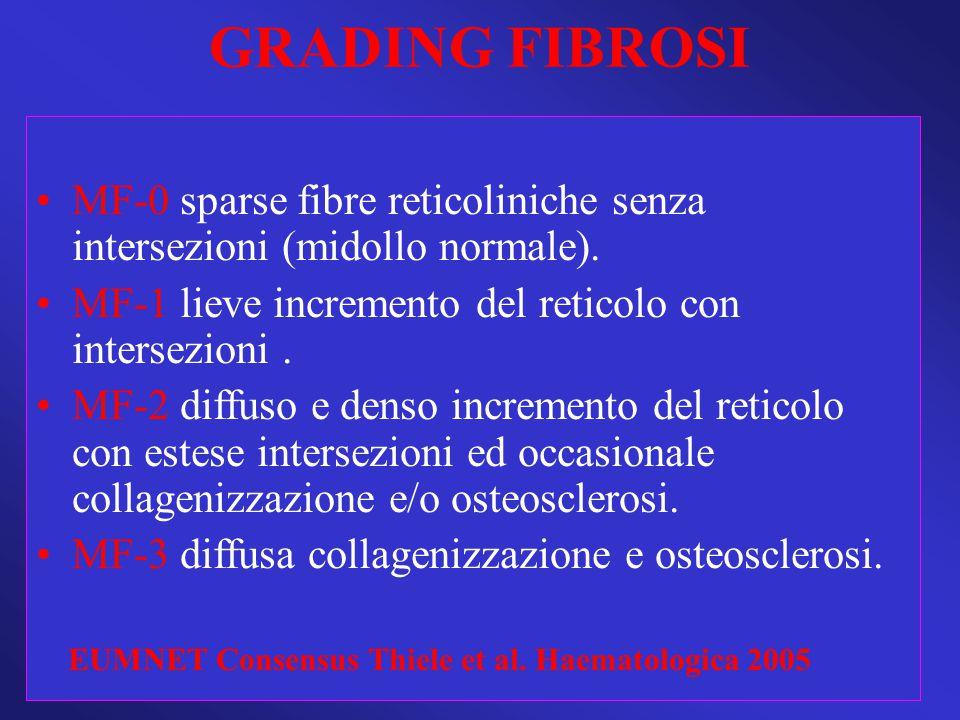 GRADING FIBROSI MF-0 sparse fibre reticoliniche senza intersezioni (midollo normale). MF-1 lieve incremento del reticolo con intersezioni. MF-2 diffus