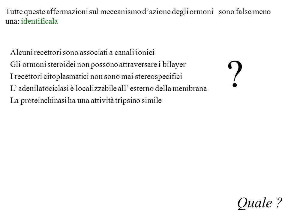 Tutte queste affermazioni sul meccanismo d'azione degli ormoni sono false meno una: identificala Quale ? Alcuni recettori sono associati a canali ioni