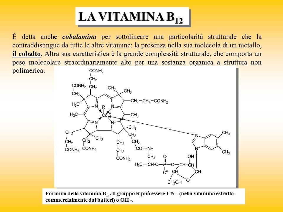 LA VITAMINA B 12 il cobalto È detta anche cobalamina per sottolineare una particolarità strutturale che la contraddistingue da tutte le altre vitamine