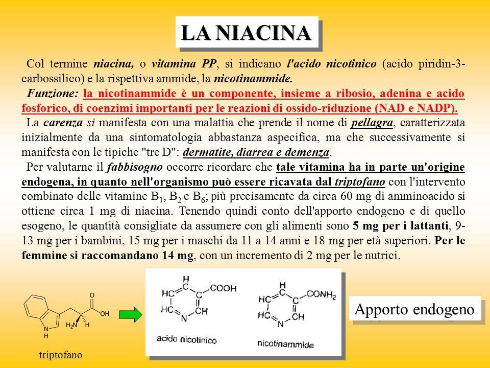 LA NIACINA Col termine niacina, o vitamina PP, si indicano l'acido nicotinico (acido piridin-3- carbossilico) e la rispettiva ammide, la nicotinammide