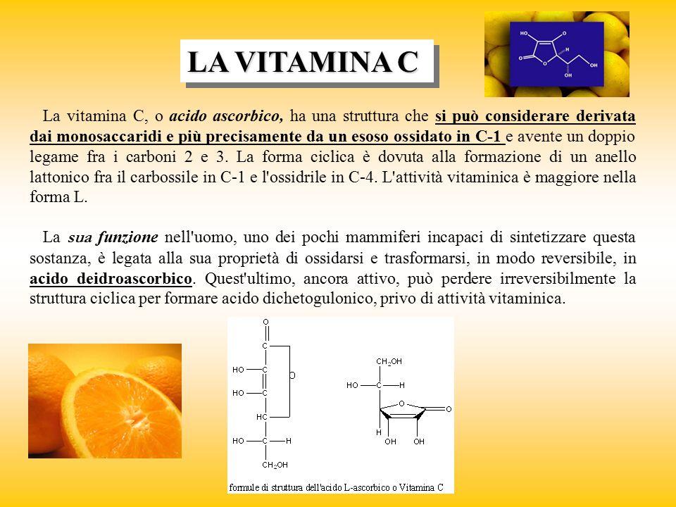 LA VITAMINA C La vitamina C, o acido ascorbico, ha una struttura che si può considerare derivata dai monosaccaridi e più precisamente da un esoso ossi