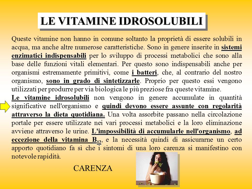 LE VITAMINE IDROSOLUBILI sistemi enzimatici indispensabili i batteri Queste vitamine non hanno in comune soltanto la proprietà di essere solubili in a