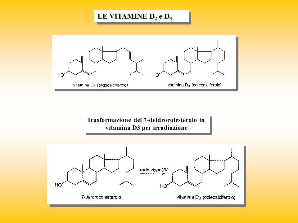 Trasformazione del 7-deidrocolesterolo in vitamina D3 per irradiazione Trasformazione del 7-deidrocolesterolo in vitamina D3 per irradiazione LE VITAM