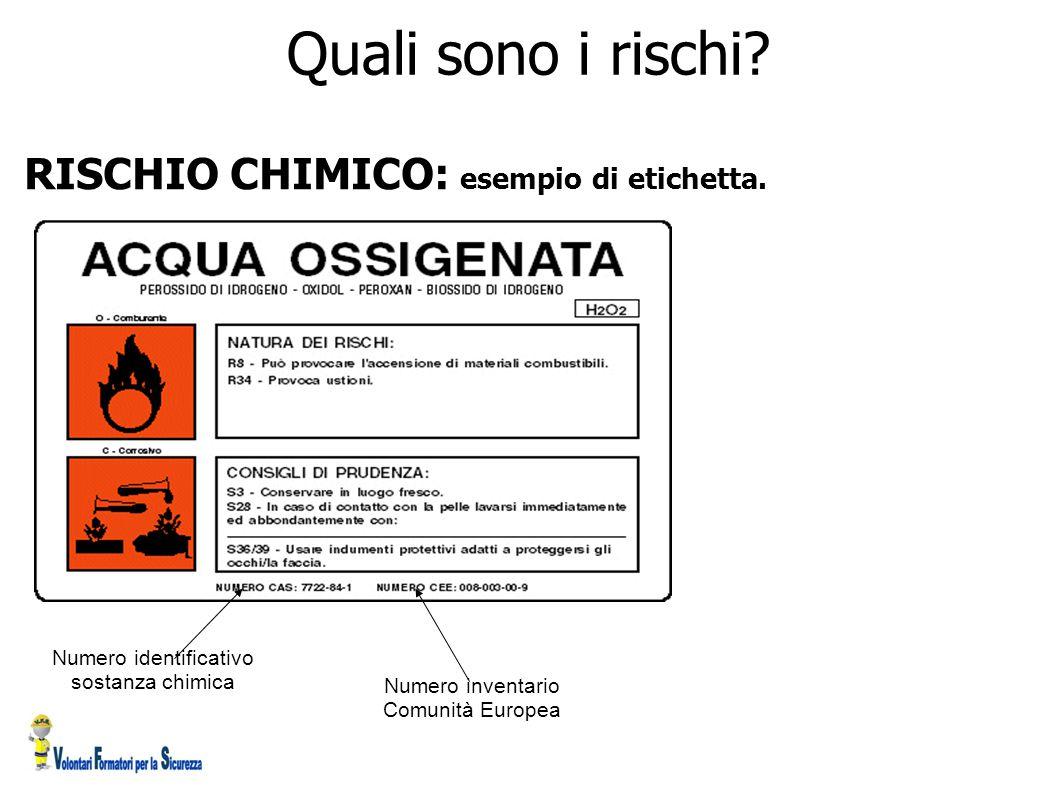 RISCHIO CHIMICO: esempio di etichetta. Numero identificativo sostanza chimica Numero inventario Comunità Europea Quali sono i rischi?
