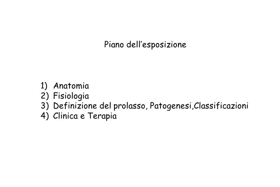 Piano dell'esposizione 1)Anatomia 2)Fisiologia 3)Definizione del prolasso, Patogenesi,Classificazioni 4)Clinica e Terapia