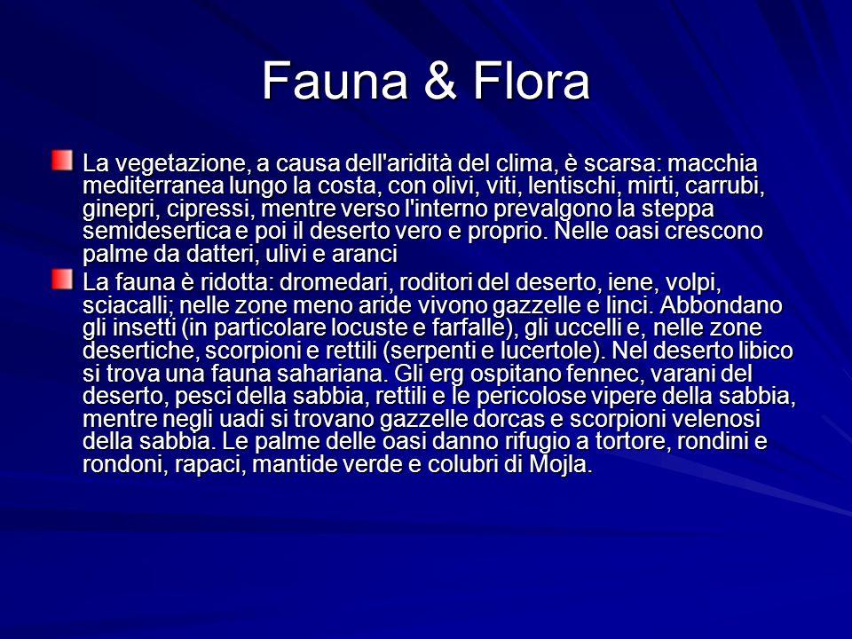 Fauna & Flora La vegetazione, a causa dell'aridità del clima, è scarsa: macchia mediterranea lungo la costa, con olivi, viti, lentischi, mirti, carrub