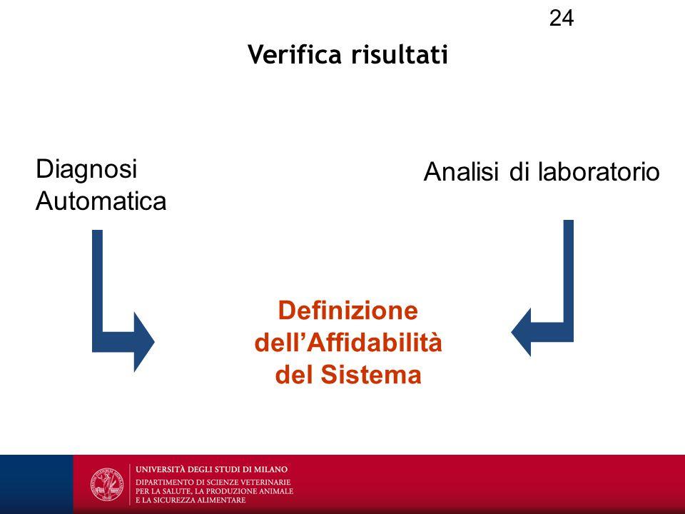24 Verifica risultati Diagnosi Automatica Analisi di laboratorio Definizione dell'Affidabilità del Sistema