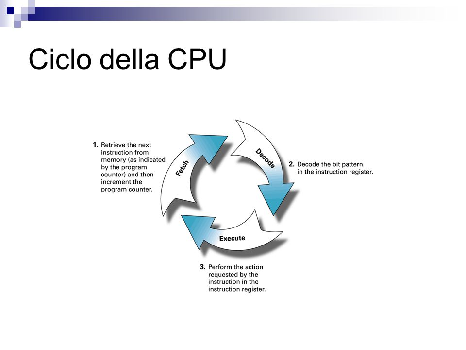 Ciclo della CPU