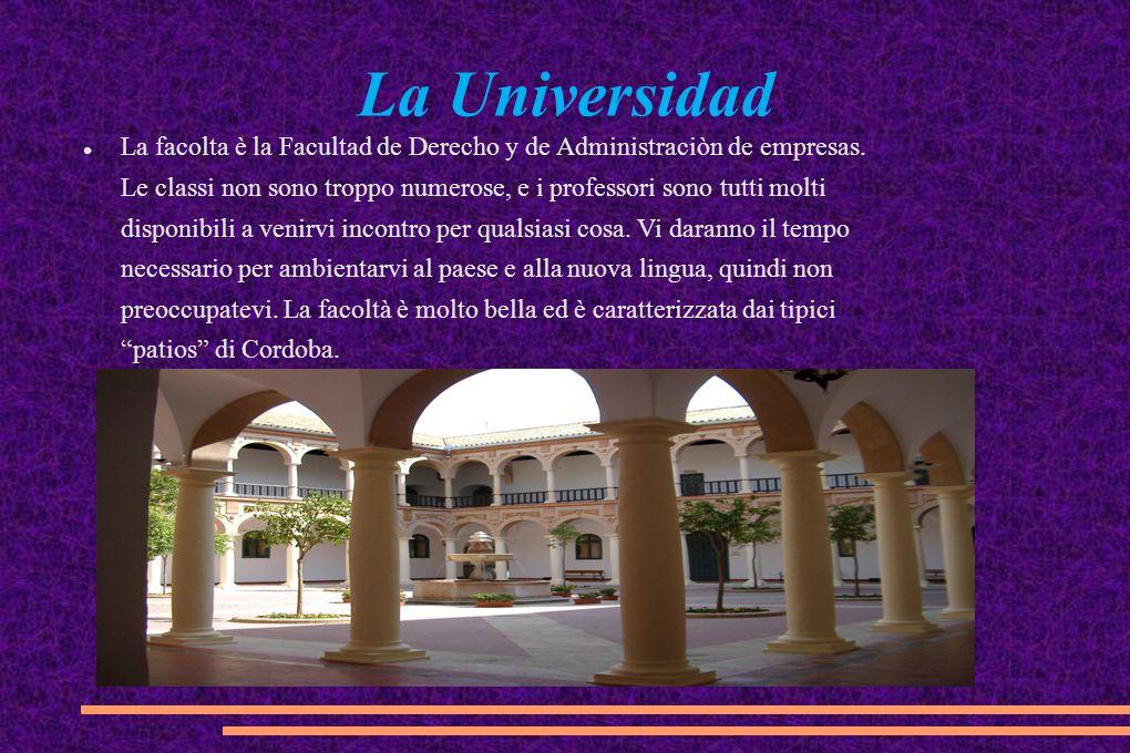 La Universidad La facolta è la Facultad de Derecho y de Administraciòn de empresas. Le classi non sono troppo numerose, e i professori sono tutti molt