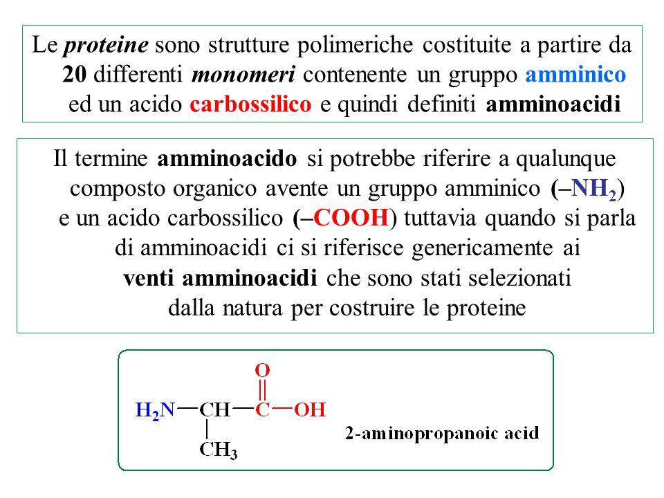 Le proteine sono strutture polimeriche costituite a partire da 20 differenti monomeri contenente un gruppo amminico ed un acido carbossilico e quindi