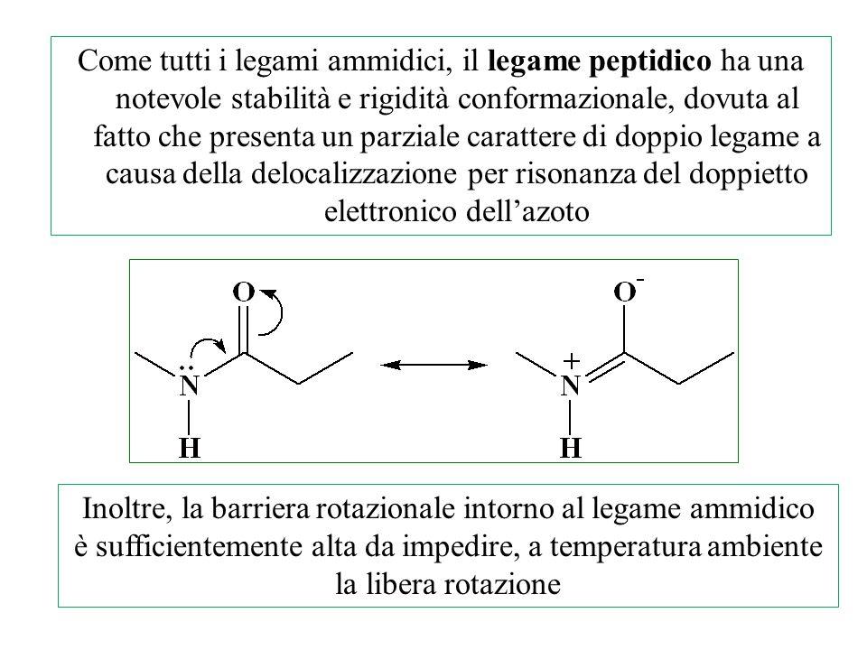 Come tutti i legami ammidici, il legame peptidico ha una notevole stabilità e rigidità conformazionale, dovuta al fatto che presenta un parziale carat