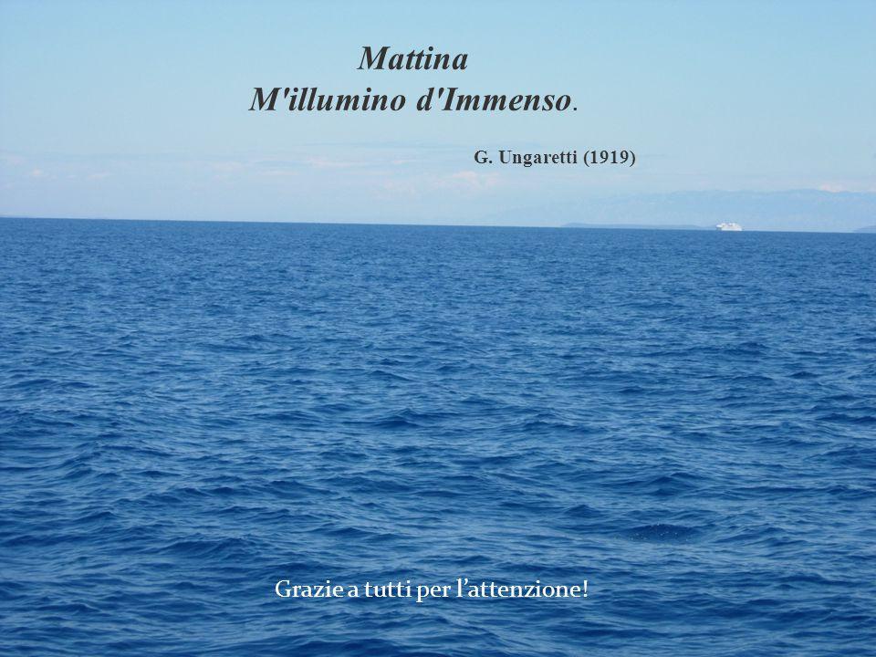 Grazie a tutti per l'attenzione! Mattina M'illumino d'Immenso. G. Ungaretti (1919)