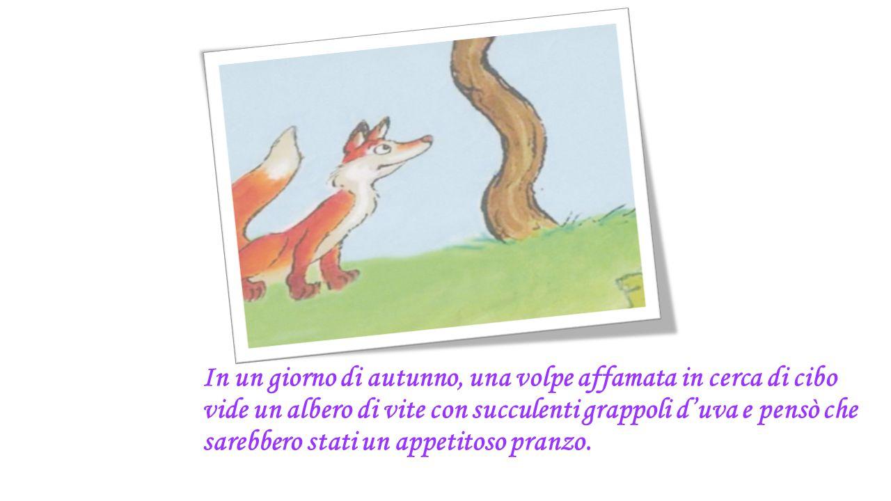 In un giorno di autunno, una volpe affamata in cerca di cibo vide un albero di vite con succulenti grappoli d'uva e pensò che sarebbero stati un appet