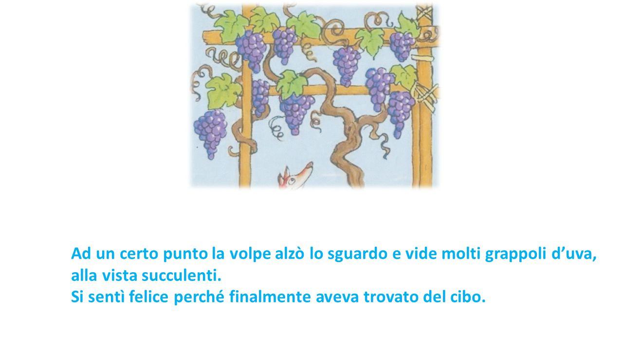 Ad un certo punto la volpe alzò lo sguardo e vide molti grappoli d'uva, alla vista succulenti. Si sentì felice perché finalmente aveva trovato del cib