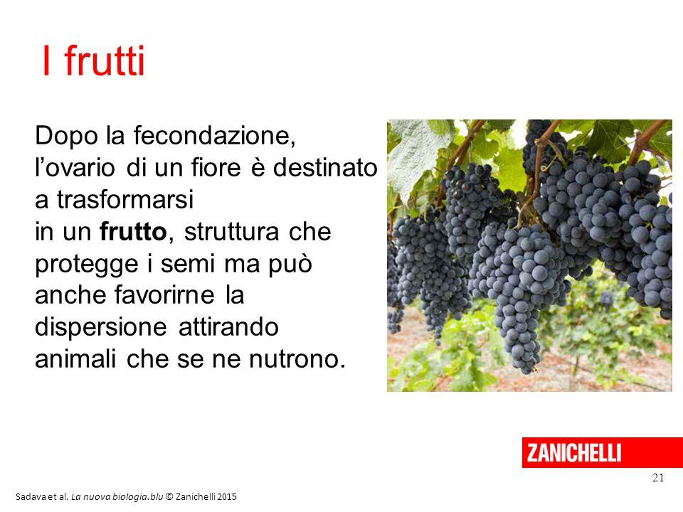 I frutti 21 Dopo la fecondazione, l'ovario di un fiore è destinato a trasformarsi in un frutto, struttura che protegge i semi ma può anche favorirne l