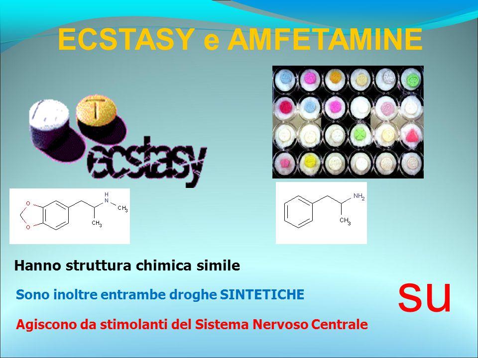 ECSTASY e AMFETAMINE Hanno struttura chimica simile su Agiscono da stimolanti del Sistema Nervoso Centrale Sono inoltre entrambe droghe SINTETICHE