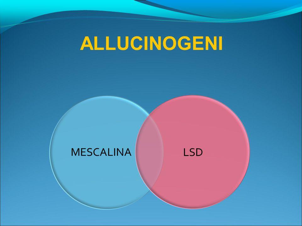 ALLUCINOGENI MESCALINA LSD